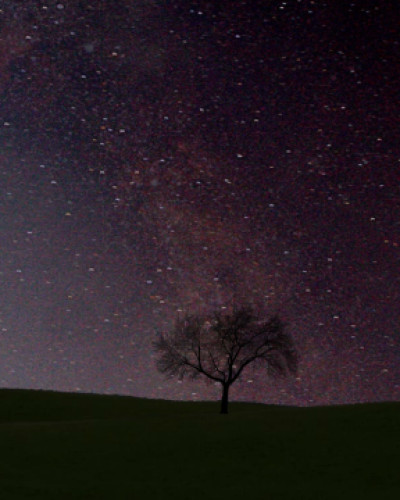 Video time lapse - Contest Ava Forza naturale Milk way